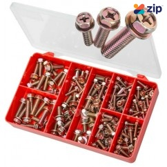 Torres AAK01 - Jap Fine Hex Sems Screws Kit (Small Sizes) Screws